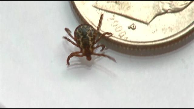Lyme disease is spreading across the country