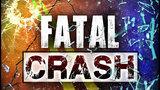 51-year-old man dies in Amherst County crash
