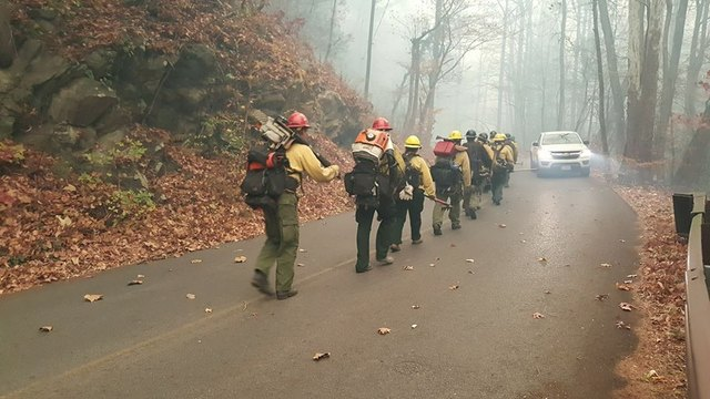 Firefighters from around the region traveled to Gatlinburg and Sevierville to fight the fires. (National Park Service)_249254