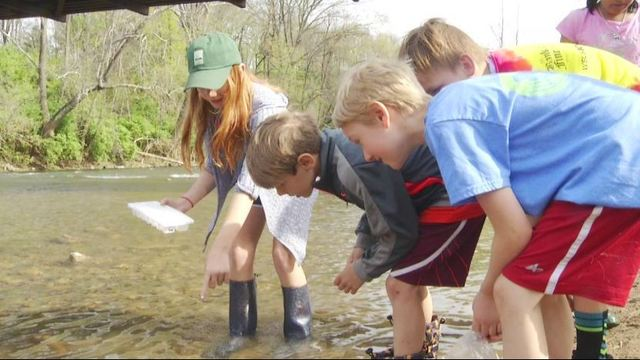 Making learning fun: Take the kids to see a fish hatchery
