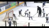 Rail Yard Dawgs host summer hockey school