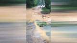 Roanoke County residents still dealing with May flood problems