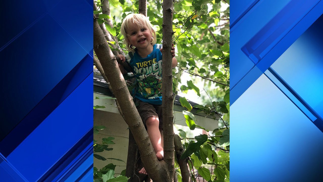 Medical Examiner 2 Year Old Died Of Accidental Drowning At