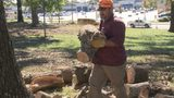 Free firewood available at Ballou Park in Danville