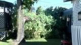 Christiansburg Wind Damage