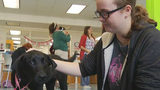 Franklin County High School partners with Humane Society for dog therapy&hellip&#x3b;