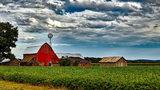 Northam awards grants to preserve farmland
