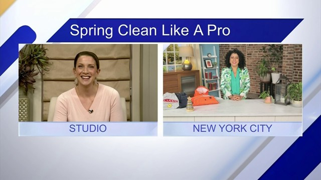 Spring Clean Like a Pro