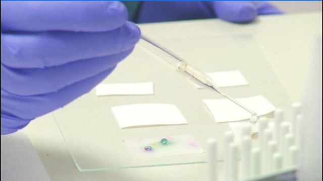 Testing completed on backlog of nearly 1,800 untested rape kits