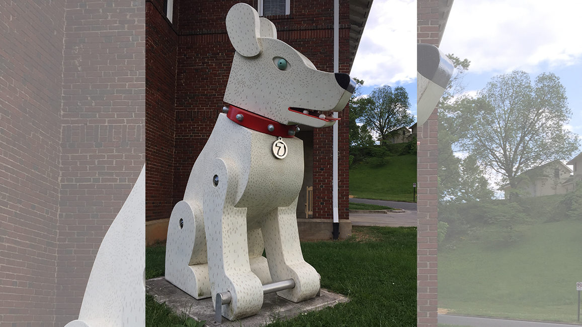 Beloved Trojan Dog will have new temporary home