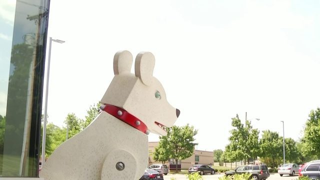 Trojan Dog moves into Raleigh Court until 2020