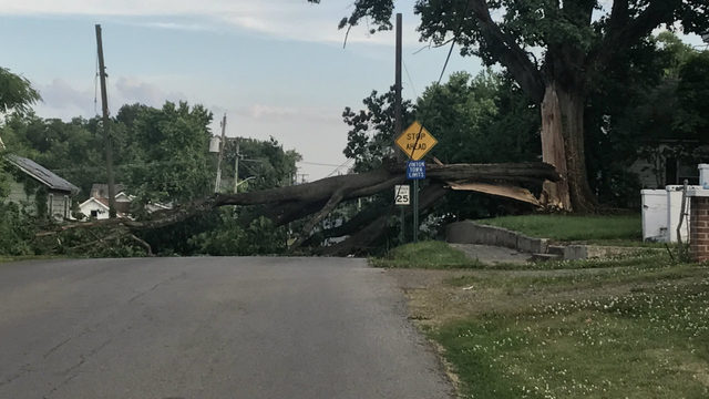 Power out in Vinton neighborhood after tree falls