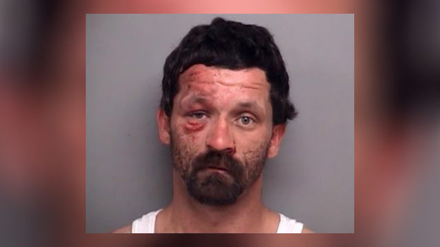 Henry County man hurts two deputies in failed attempt to escape arrest