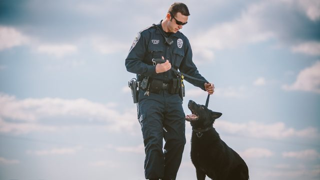 Roanoke Police K-9 Jabbo dies, Department says