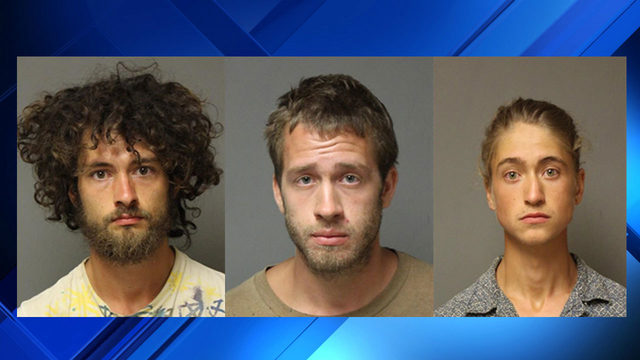 Three charged, more than 100 plants confiscated after Giles County…