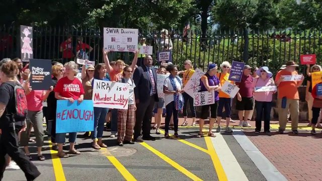 Roanokers protest in Richmond, disgusted with special gun session outcome