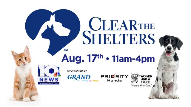 What you need to know about Clear the Shelters