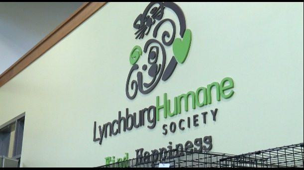 Lynchburg area animal shelters hold adoption special for National Nude Day