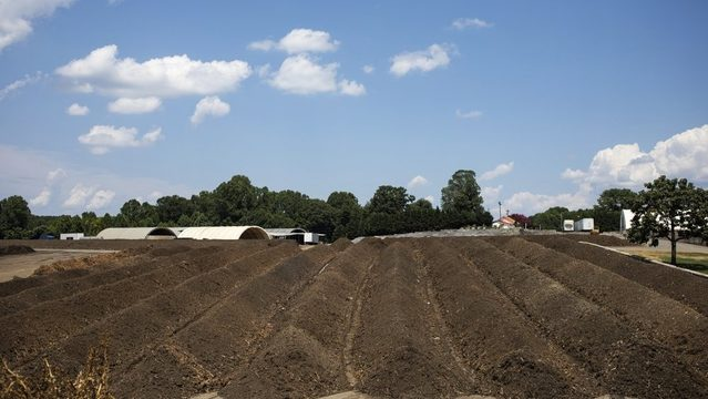 Microbes turn organic waste into compost on a local farm