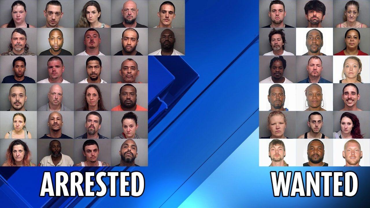 Henry County drug bust