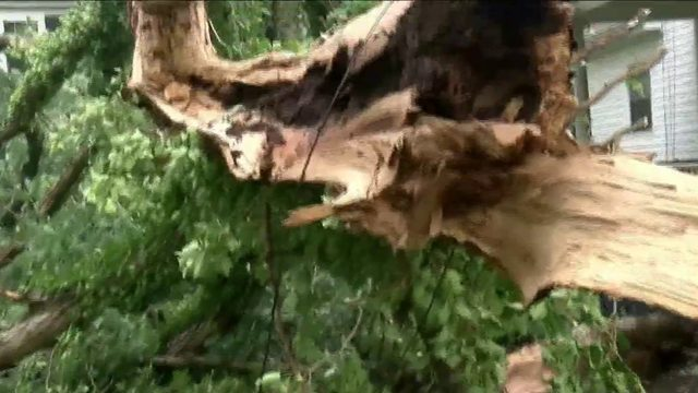 Lynchburg cleans up after Sunday storm