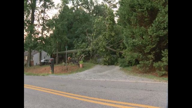 Gretna woman recovering after tree falls on house