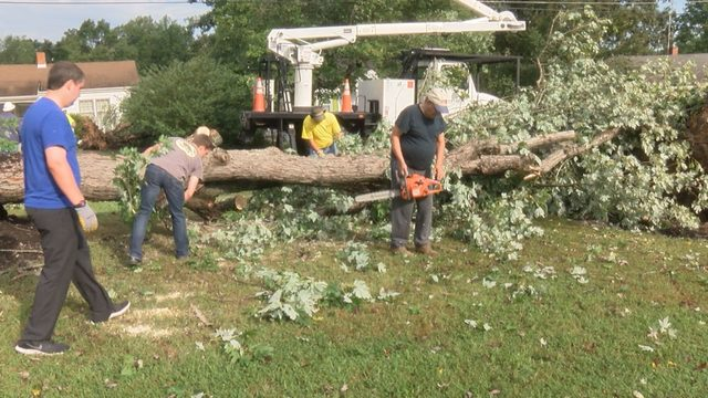 Danville residents in cleanup mode after Thursday microburst creates mess