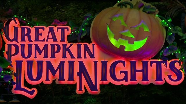 Dollywood's Great Pumpkin LumiNights named nation's best theme park…