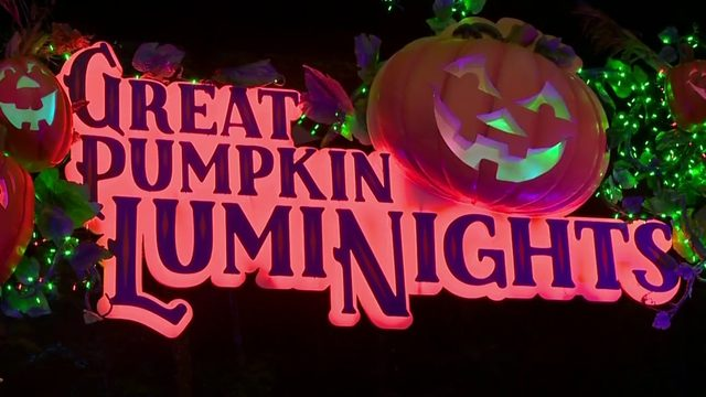 Dollywood set for Halloween with Great Pumpkin LumiNights