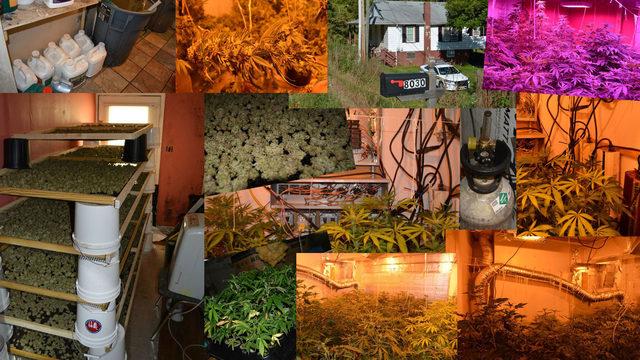 Authorities bust indoor marijuana growing operation capable of bringing…