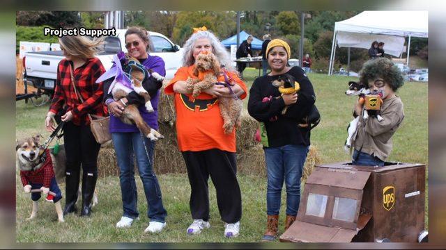 Barktoberfest fun for families, pets