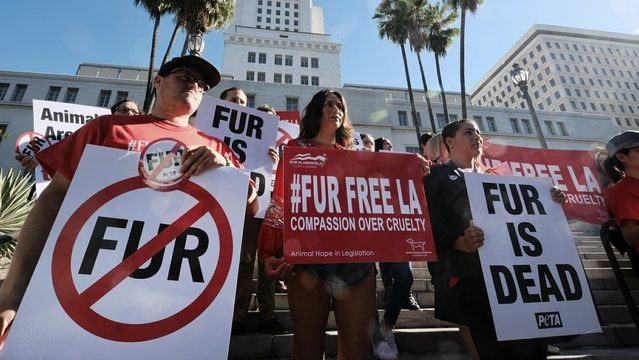 California first state to ban fur products
