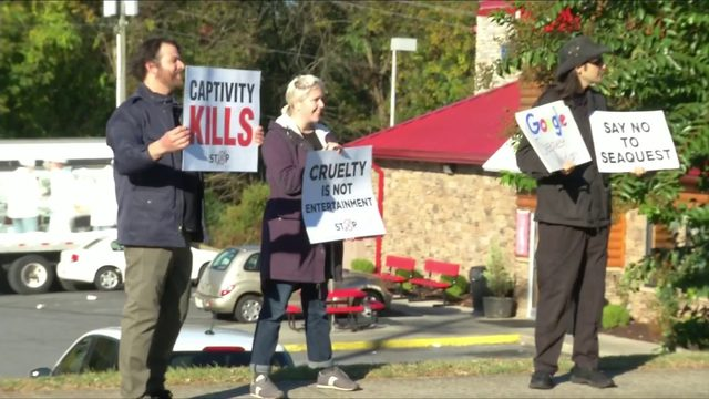 Protests during SeaQuest's grand opening in Lynchburg