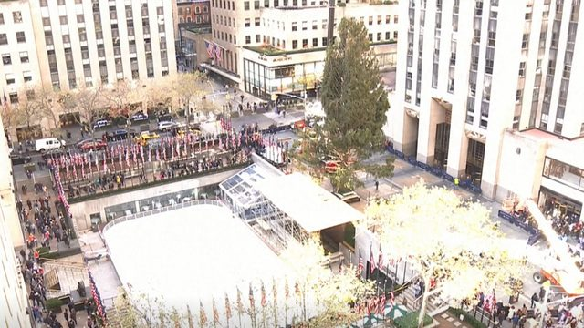 Rockefeller Center Christmas tree arrives in New York City